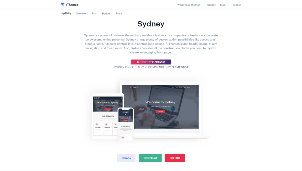 Sydney thème WordPress template